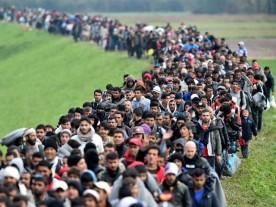 Migrants-Crowds-Cross-Into-Slovenia-Getty-640x480 (2)